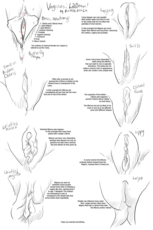 Нарисовать вагину